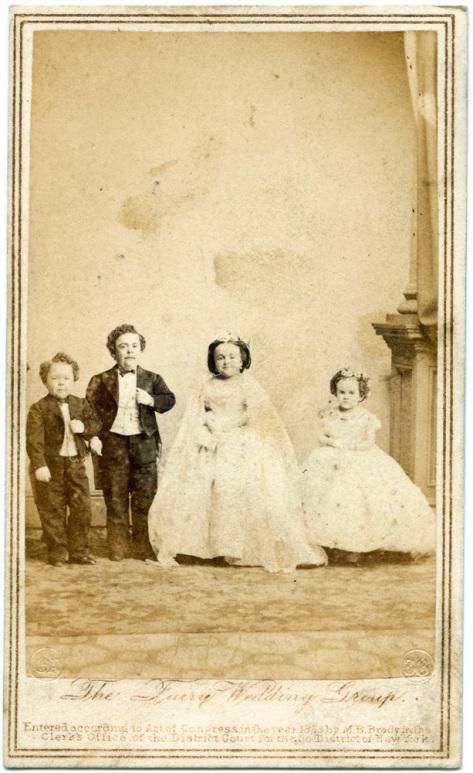 Fairy Wedding Group #3