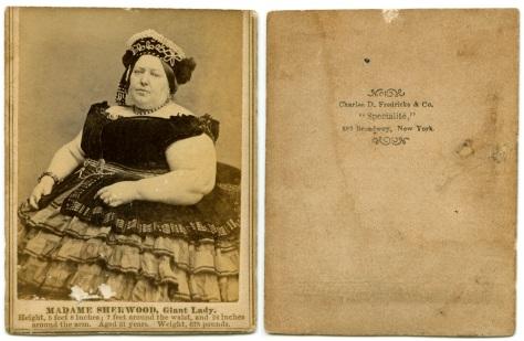 MadameSherwood, by C.D. Fredericks
