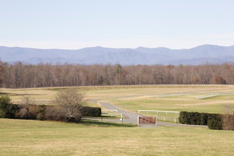The Blue Ridge Mountains, from Montpelier