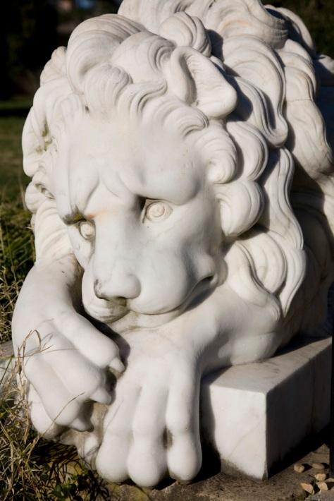Garden Lion, Montpelier