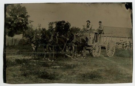 Horse Team and Wagon, anonymous, date unknown (2nd half 19th century)