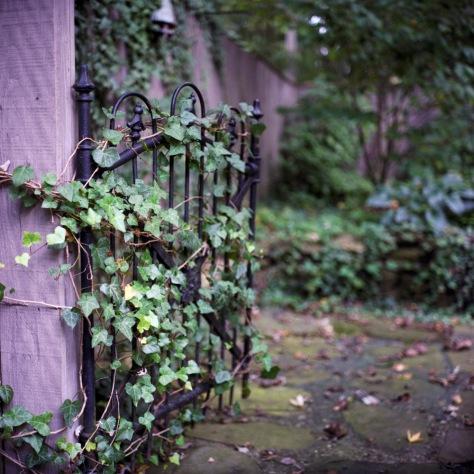 Iron Gate, Henry's Garden
