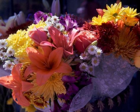 Flowers #1, Rolleinar 1