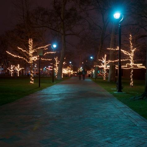 Franklin Park Allee