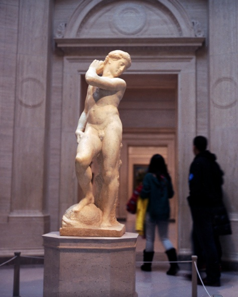 Michelangelo's David/Apollo