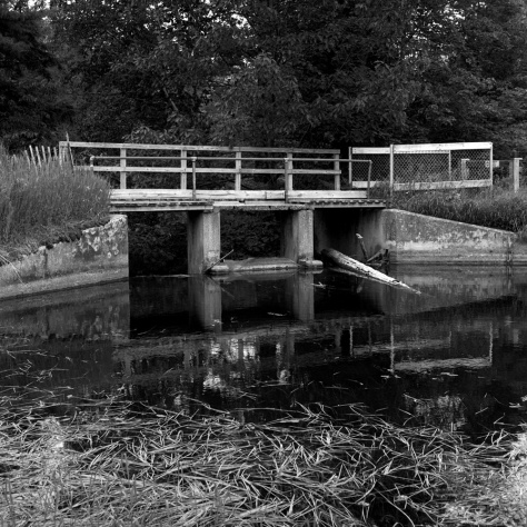 Bridge, Oneal Lake