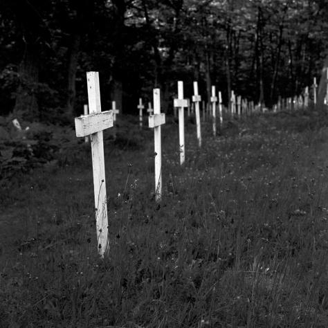 Crosses, St. Ignatius Cemetery