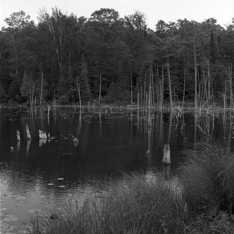 Oneal Lake