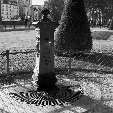 Drinking Fountain, Notre Dame