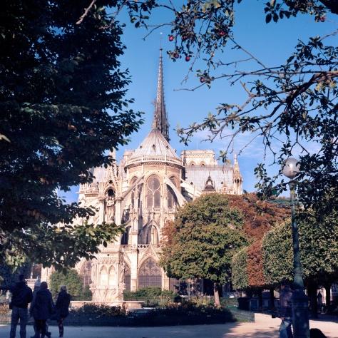 Notre Dame, Apples
