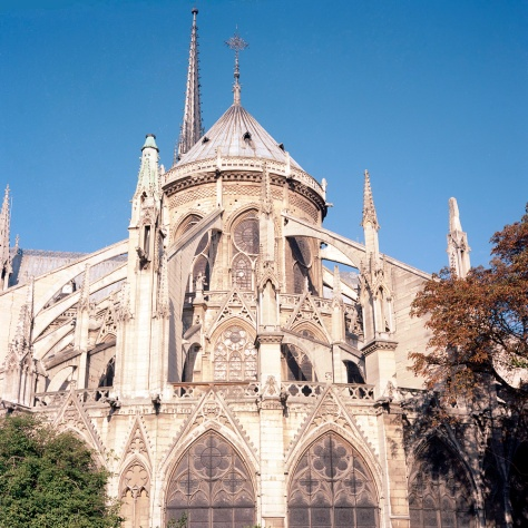 Notre Dame, Rear