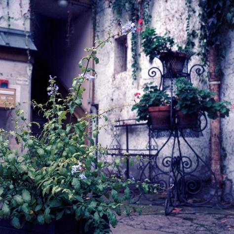 Planters, Courtyard, Chalon