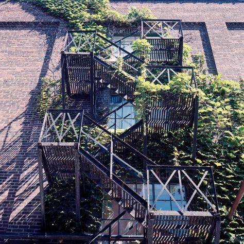 Ivy, Fire Escape, Distillery District