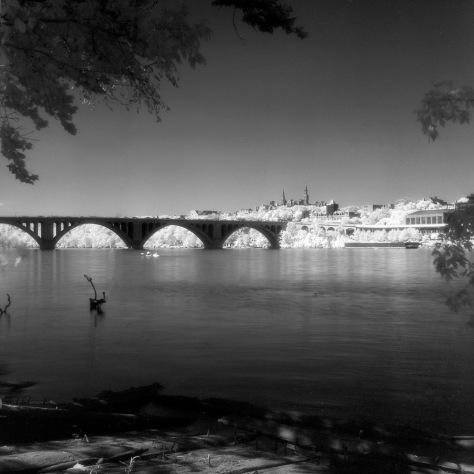 Key Bridge, Georgetown, Kayakers
