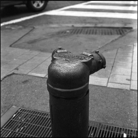 Siamese Standpipe, Rain