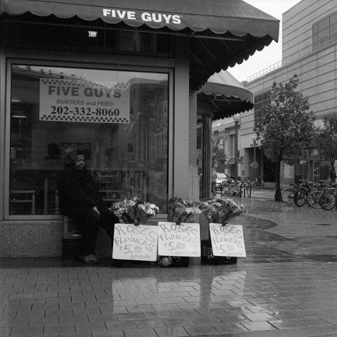 Roses, 5 Dollars