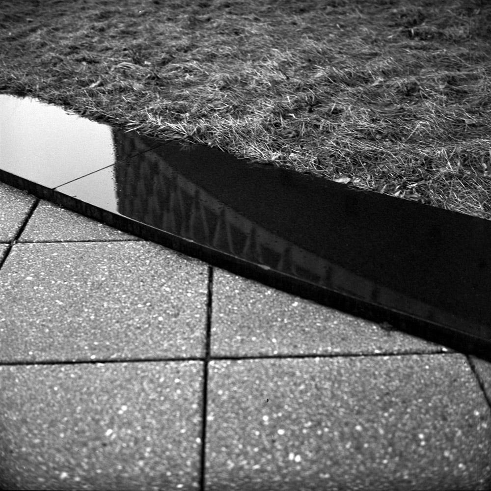 Pavers, Reflection, Grass