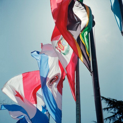 Flags, Pan-American Health Organization
