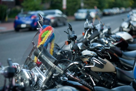 Rainbow Lei, Harleys