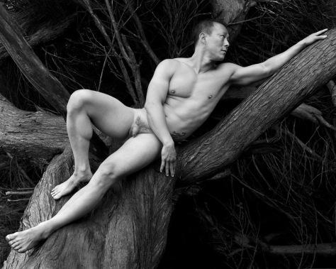 K.T., Reclining, Tree