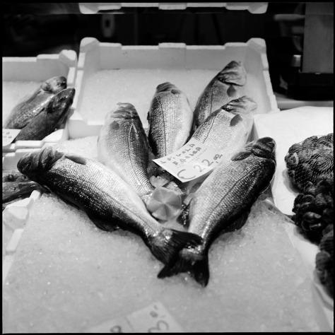 Fish, Mercato Centrale