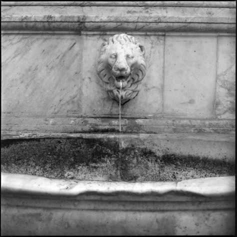Lion Head Fountain, San Lorenzo, Florence
