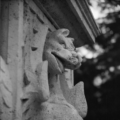 Dragon, Profile, Villa Borghese