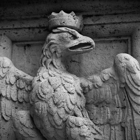 Eagle, Villa Borghese