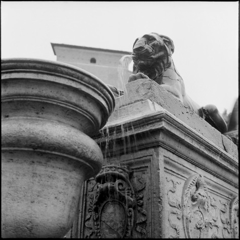 Fountain in the Wind, Capitoline HIll