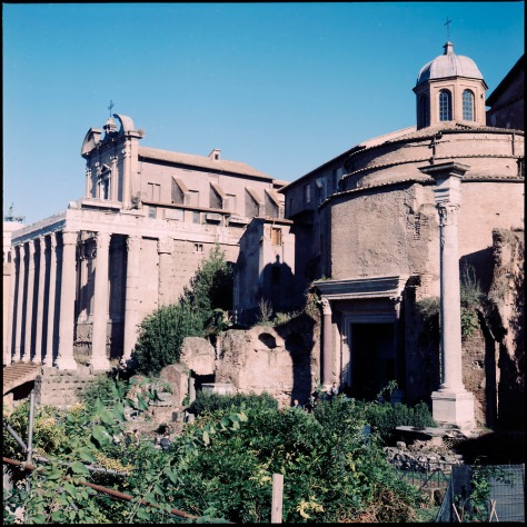 Temple of Antoninus and Faustian and the Temple of Romulus