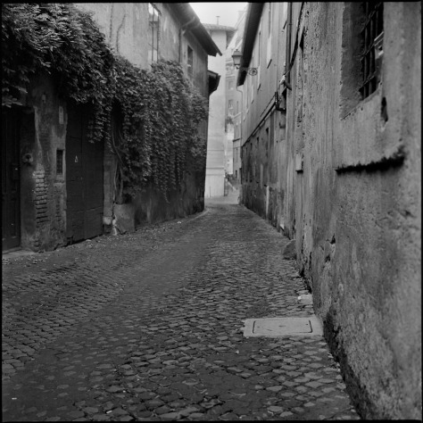 Twisty Alley, Trastevere