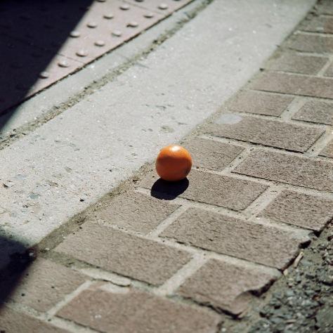Forlorn Orange